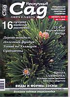 """Коллекционный номер. Журнал """"Нескучный сад"""" ноябрь 2010г., фото 1"""