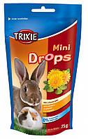 Витамины Trixie Mini Drops для грызунов с одуванчиком, 75 г, фото 1