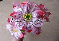 Букет лилия тигровая розовая шесть ног