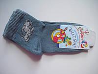 Детские носки демисезонные - Ирис р.14 (шкарпетки дитячі, Іріс)