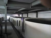 Оборудование для разведения рыбы. Рыбные фермы УЗВ. Емкости для рыбы из полипропилена.