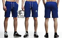 Шорты мужские Ястребь трикотажные синие