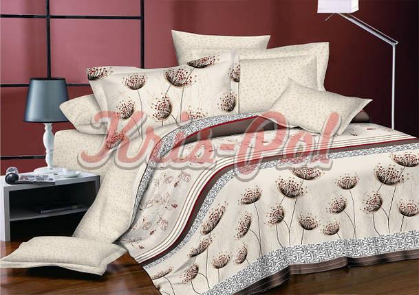 Комплект постельного белья полуторный 150*220 сатин (5698) TM KRISPOL Украина, фото 2