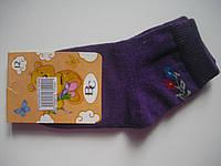Детские носки демисезонные - Версаль р.12 (шкарпетки дитячі, ВС)