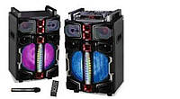 """Акустическая система WIMPEX WIMPEX WX 7314-12 12""""X2  Дистанционный пульт, микрофон Bluetooth"""