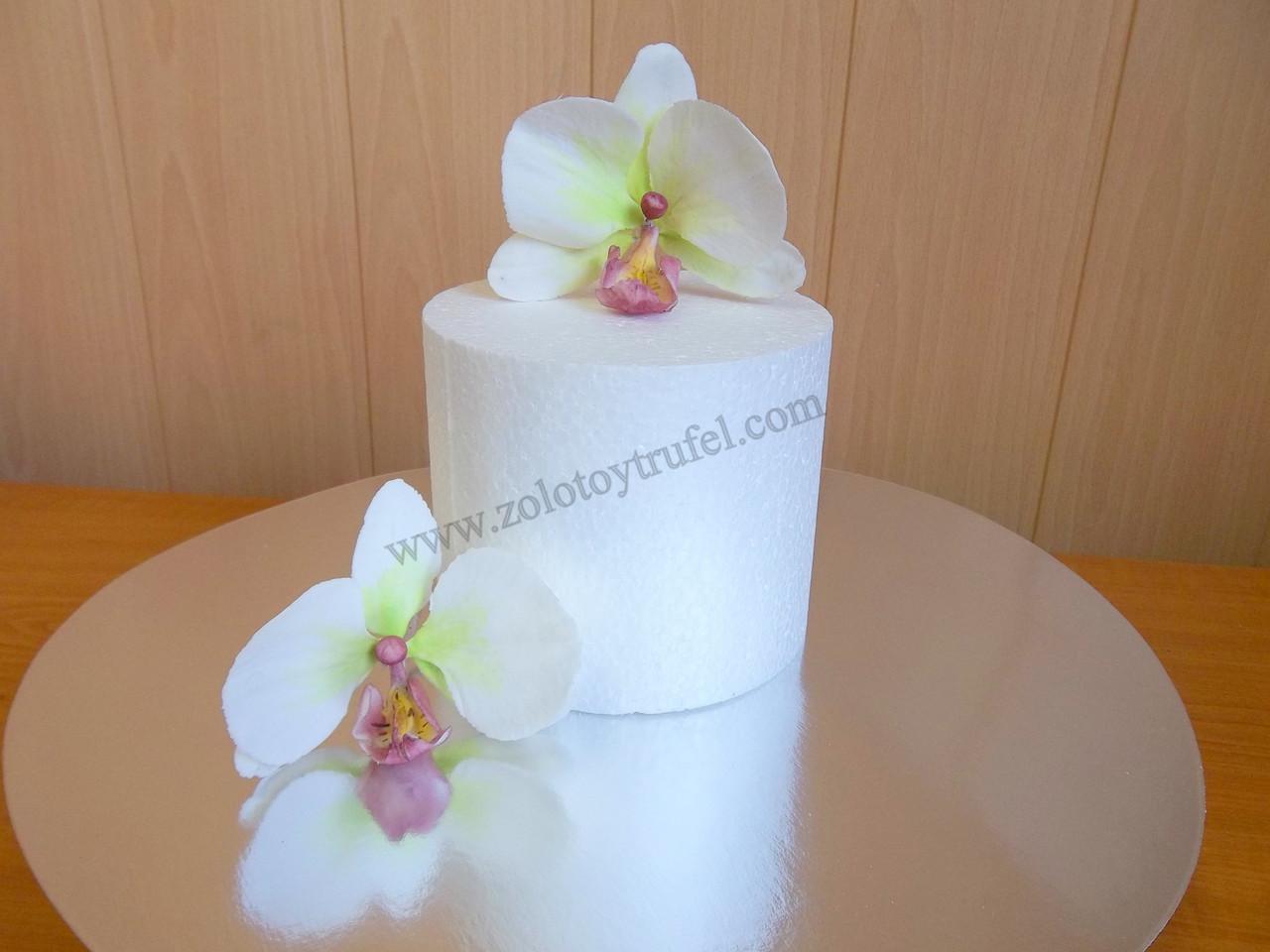 Муляж для торта из пенопласта - круг Ф 18 см h 10 см