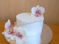 Муляж для торта из пенопласта - круг Ф 34 см h 10 см