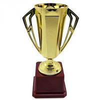 Кубок Поздравительный большой 21см