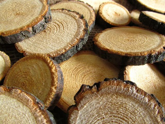 Спил дерева (срез)