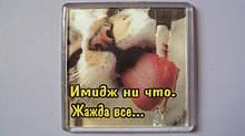 МАГНИТЫ ПЛАСТИКОВЫЕ. киев