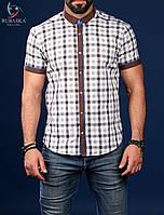 Мужская рубашка с коротким рукавом в клетку 2017
