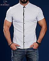 Мужская рубашка с коротким рукавом в горошек белая