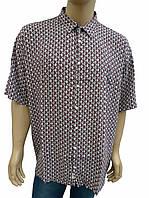 Рубашка мужская хлопок-бук-бамбук большой размер, фото 1