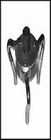 TJG.Съемник фильтра краб 45 - 75 мм, изогнутый (А2101)