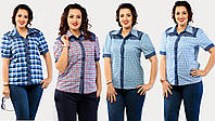 Рубашка женская 5 цветов, размеры от 42-го до 54-го.