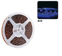 Светодиодная LED3528 лента REN-BLUE, фото 1