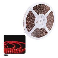 Светодиодная LED3528 лента NIL-RED, фото 1