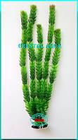 Растение Атман AP-005C, 50см