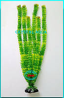 Растение Атман AP-005E, 50см