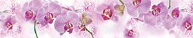 """Кухонный фартук (панно) """"Орхидея - бабочка"""" из стекла"""