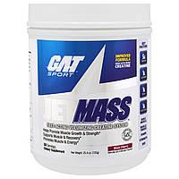 GAT, Sport, JetMass, добавка для набора мышечной массы с креатином, черная вишня, 720 г