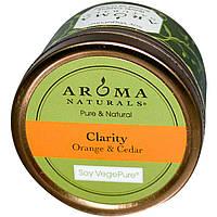 Aroma Naturals, Soy VegePure, свеча для поездок, апельсин и кедр, 2,8 унции (79,38 г)
