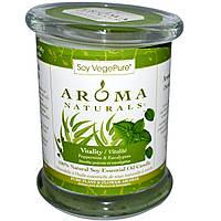 Aroma Naturals, 100% Натуральная Соевая Свеча «Бодрость» с Эфирными Маслами Мяты и Эвкалипта, 8.8 унций (260 г)