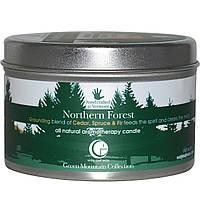 Way Out Wax, Полностью натуральная ароматерапевтическая свеча, северный лес, 6,7 унций (190 гр)