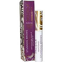 Pacifica, Stunning Brows, Eyebrow Gloss And Set, 0.27 fl oz (8.0 ml)