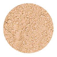 Prestige Cosmetics, Мягкое завершение Минеральная пудра-основа, Прозрачная, .23 унции (6.5 г)