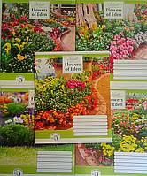 Тетрадь 60 листов линия Райский сад-16 794325 1195Ф Зошит України Украина