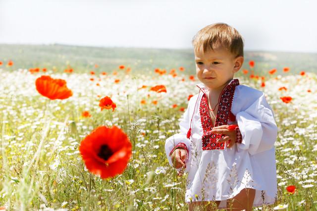 vyshivanka-detskaya-dlya-malchika-6.jpg