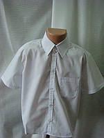 Классическая рубашка для мальчика короткий рукав белая 128 (ІІ полнота)