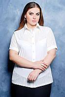 Блуза-рубашка белая прекрасный вариант под юбку и брюки, р.56, код 908М