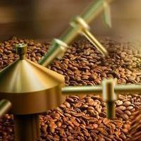 Обжарка кофе: что собой представляет и какие варианты возможны?