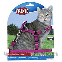 Шлейка посилена з повідцем для котів 26-37см/10мм нейлон, фото 3