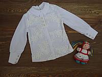 Нарядная и красивая блуза, школьная, белая для девочки р.128-152