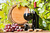 Алмазная вышивка Дары виноделия