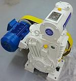 Насос 2АВПл-30. Насос вакуумний золотниковий АВПл, фото 2