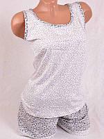 Стильный костюм футболка+шорты ТТ-0031
