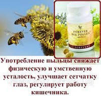 Форевер Пчелиная Пыльца (не менее 96 элементов)