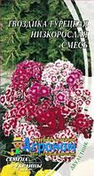 Семена цветов ГВОЗДИКА турецкая Низкорослая смесь 0,5 г  Семена Украины