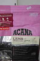Корм сухой Acana dog lamb&Ocanagan apple, 2кг