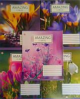 Тетрадь 96 листов клетка Amazing flowers-17 №795026 8692Ф+ Зошит України Украина
