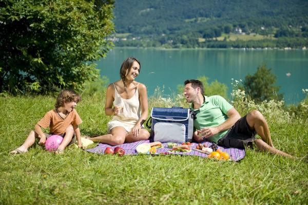 Сумка Холодильник Термос Cooling Bag CL1700-1 Термосумка am