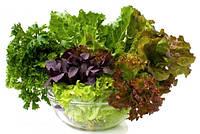 Семена зелени, фасовка 0,5кг