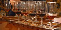 Дегустация вин Португалии