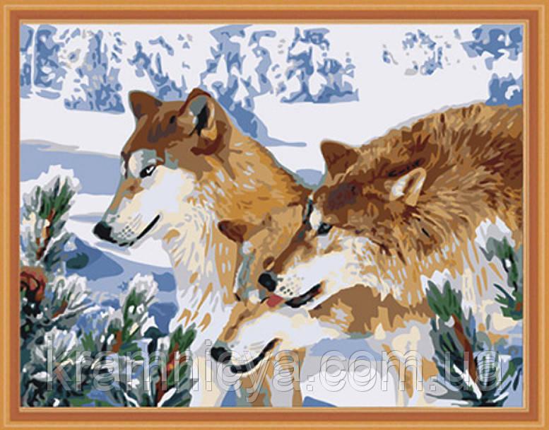 """Набор для рисования по номерам """"Волчья стая"""", MG205, 40х50см."""