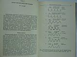 Биологические ритмы. В двух (2-х) томах (б/у)., фото 7