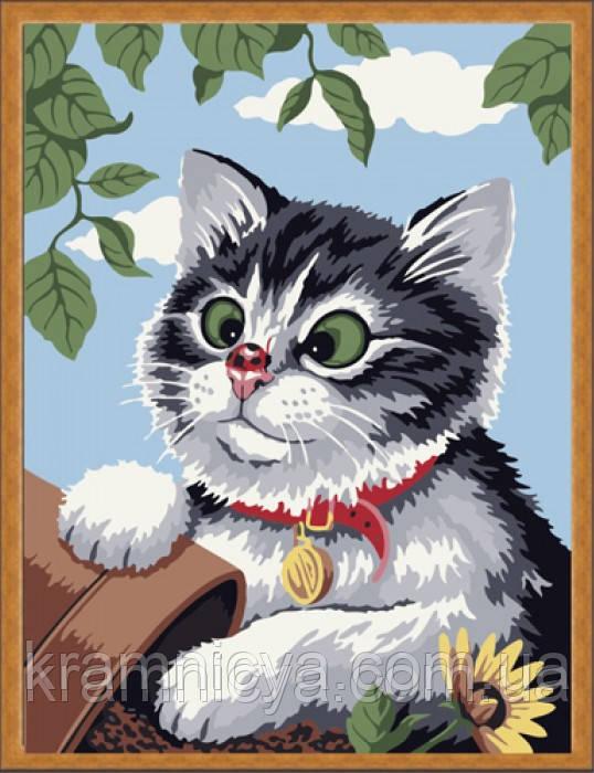 """Раскраска по номерам """"Кот с божьей коровкой на носу"""", ME085, 30х40см."""